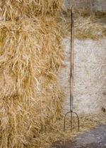 Barley bales with fork